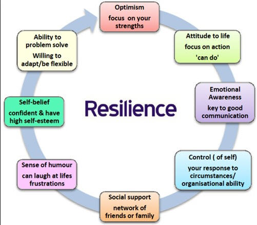 What does resilience and grit look like in youth?